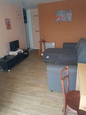 Appartement  dans un sous sol amenage d un chalet