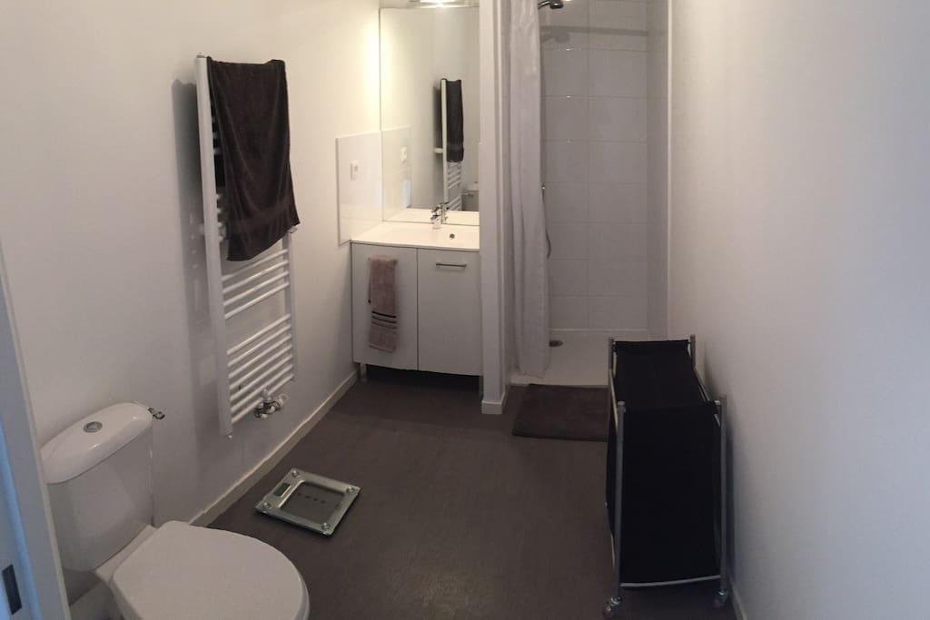 Gel douche shampoing sèche cheveux et serviettes à disposition