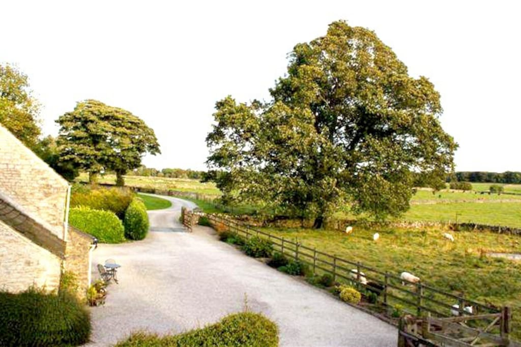 Down Brosterfield Farms long drive, overlooking the picturesque scenery across the valley.