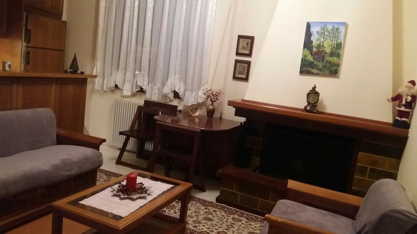 Μικρό διαμέρισμα με τζάκι στο κέντρο
