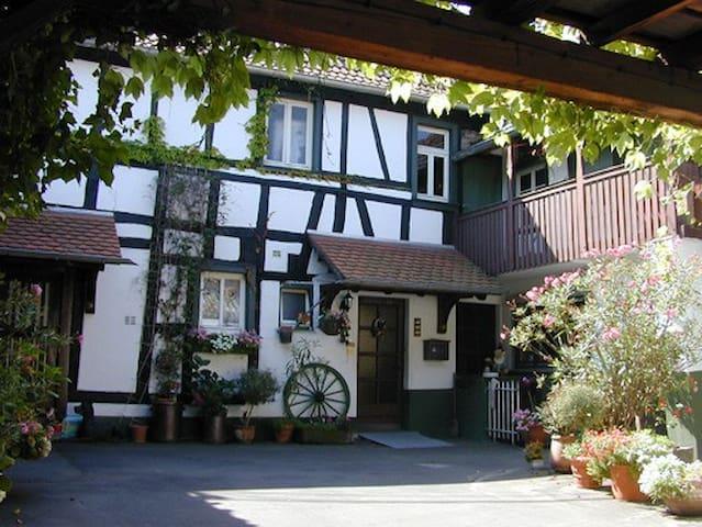 Haus mit Garten in idyllischer Hofanlage - Bruchhausen - Konukevi