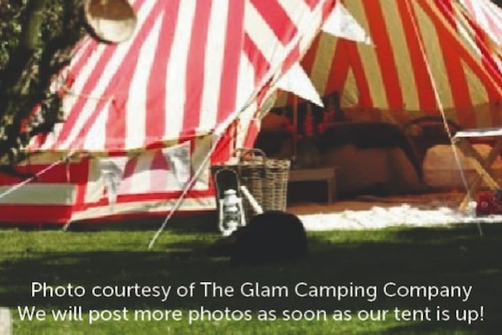 The Big Top • Two Bucks and a Bird • 14' Bell Tent