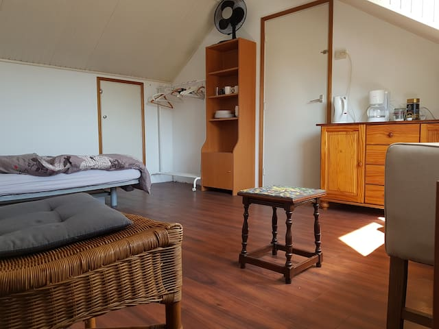 spacious attic room in Helmond