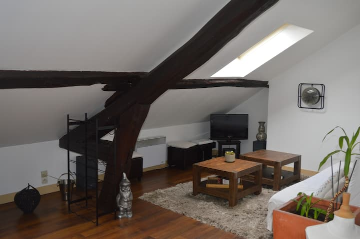 Appartement cosy centre angers