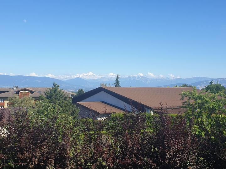 Belle vue Mont-blanc