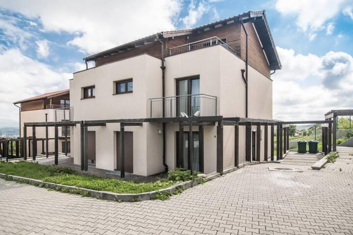 Deluxe Apartment - ApartHotel Ficusului - 2B