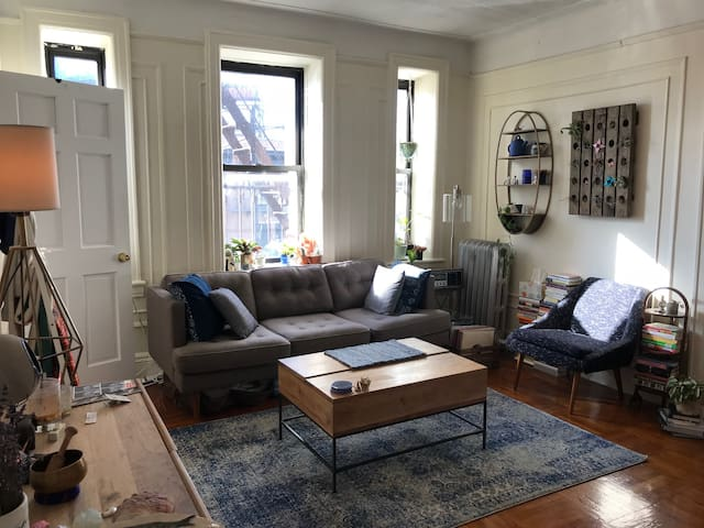 Sunny, Spacious Brooklyn 1 Bedroom