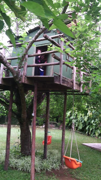 casa na arvore/tree house