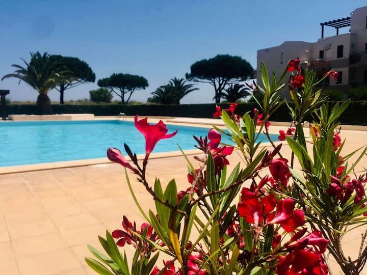 Charmant studio sur plage avec piscine et vue mer