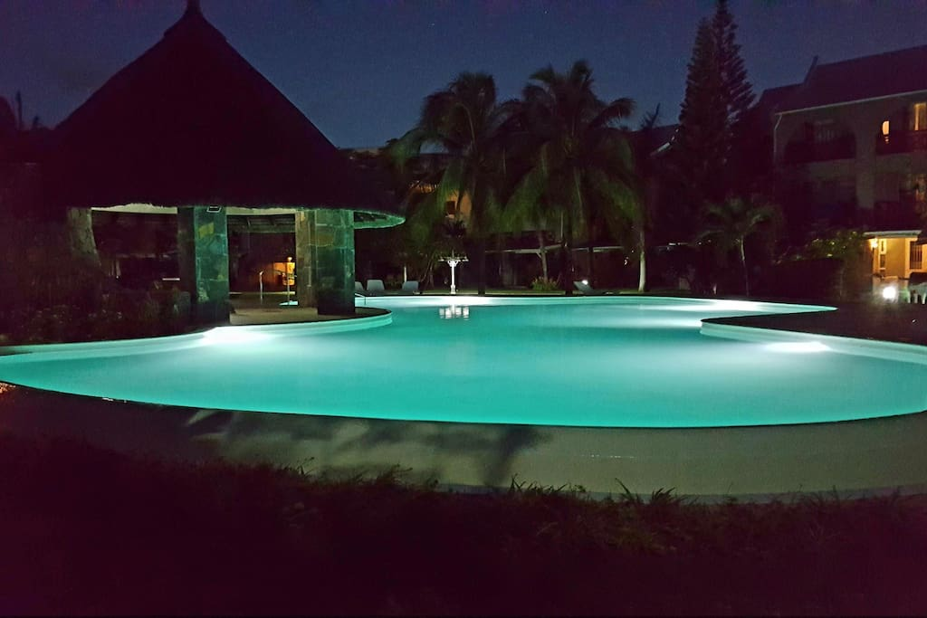 moon light swimming