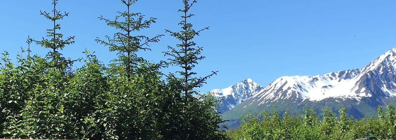 Glacier Creek - Cabin
