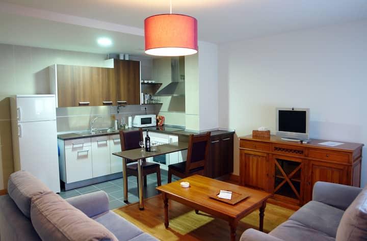 Centrico apartamento nuevo