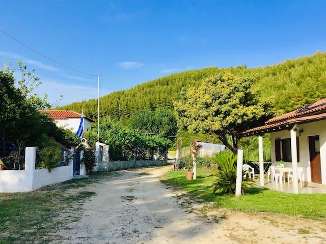 Susanna's house