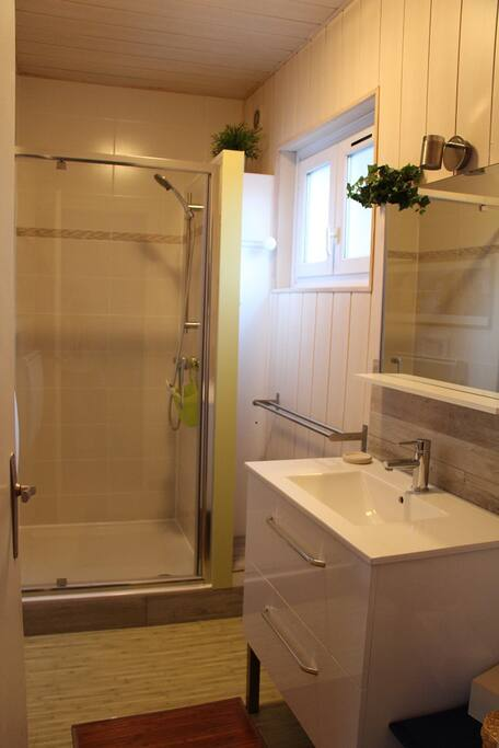 salle de bain-douche / bathroom with shower