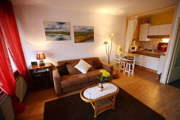 Studio ensoleillé vue sur l'Adour, 1-2 Personnes - Dax - Apto. en complejo residencial