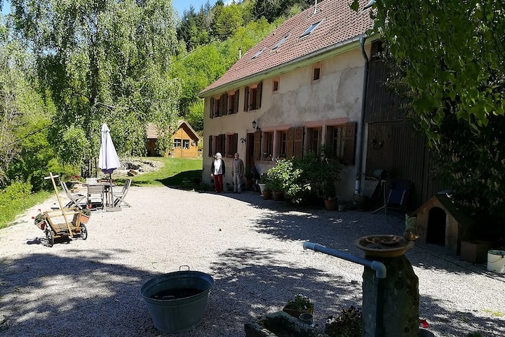 Chez Violette, Suite familiale