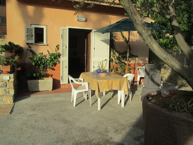SUL MARE CONFORTEVOLE MONOLOCALE CON PARCHEGGIO - Porto Santo Stefano - Appartement