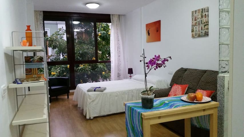 Apartamento Lidia I - Las Palmas de Gran Canaria - Apartamento