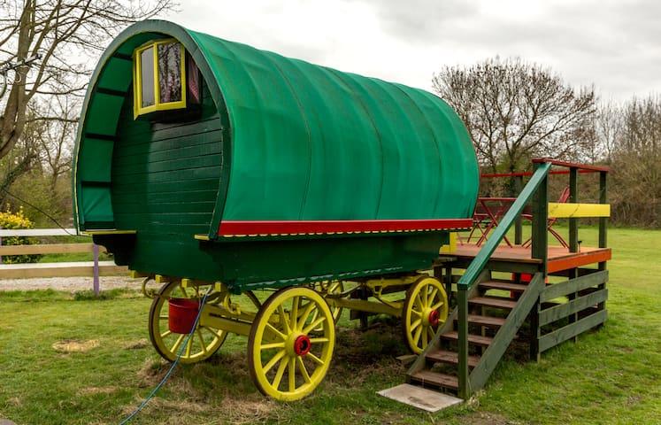 Gypsy Wagon - Cheddar - Altres