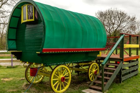 Gypsy Wagon - Cheddar