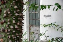 Casa  los Pochotes en La Calera