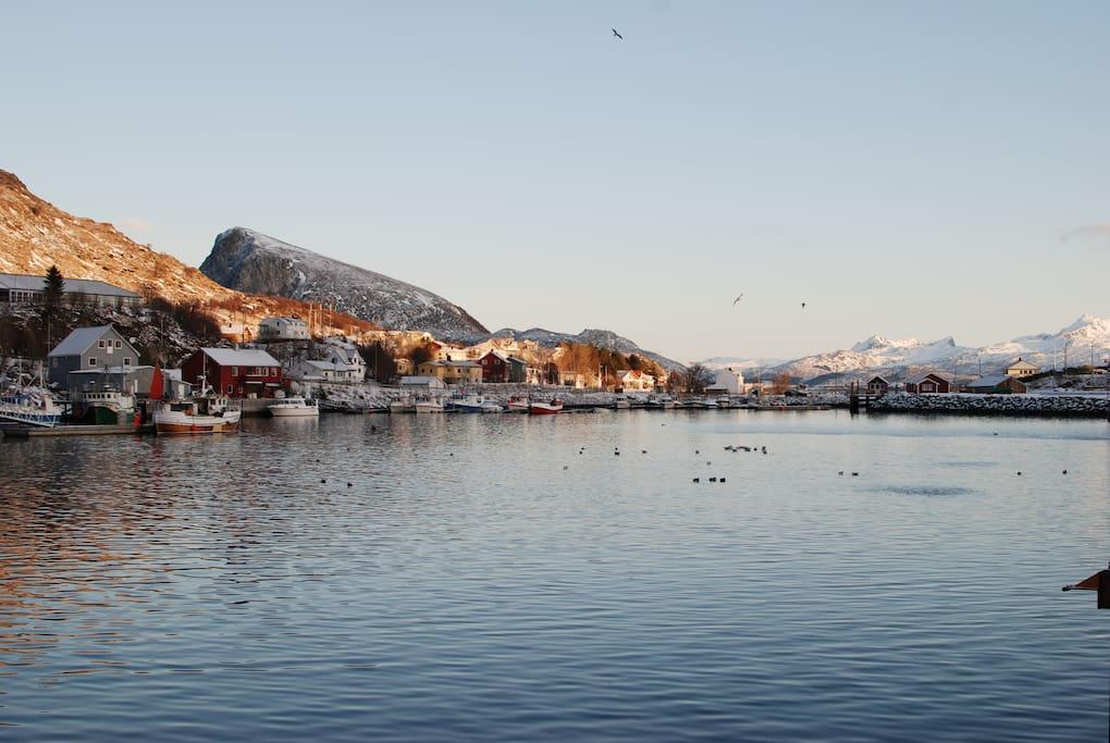 Napp havn