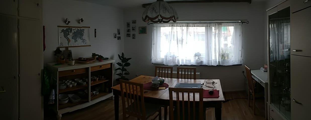 Schöne Wohnung bei Heidelberg in Leimen