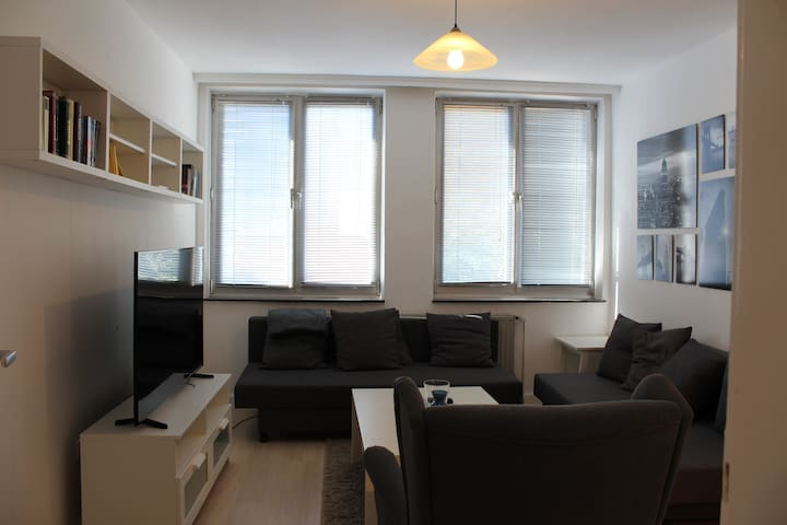 Beautiful renovated apartment in central location
