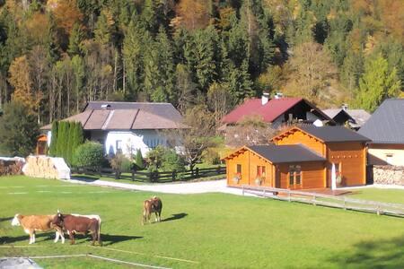 Arcadis - Obertraun - Blockhütte