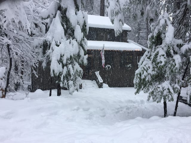 """Winter has Everett  plowing the driveway with each 4"""" snowfall!"""