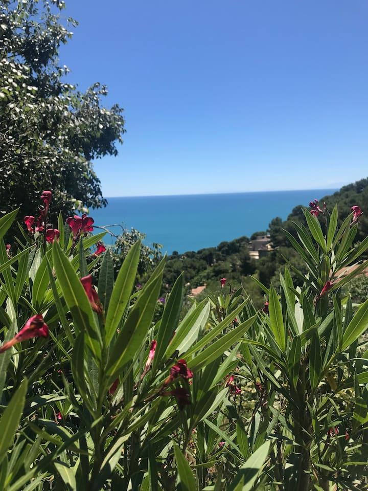 Logement avec l une des plus belles vue sur mer