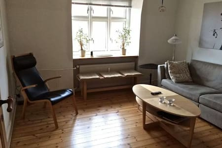 Classic and cheap apartment - 雅鲁