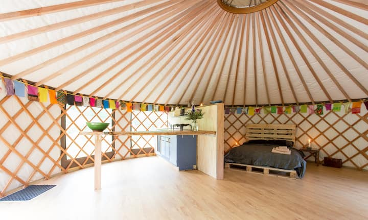 The Raglan Yurt: Experience yurt-life at its best