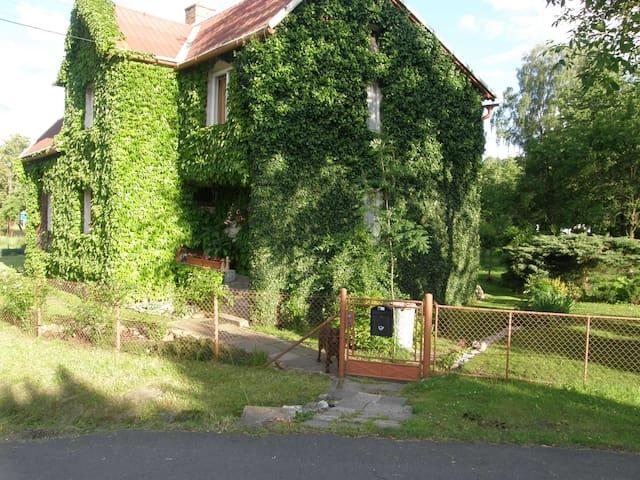 Samostatný byt s množstvím zeleně - Lipová-lázně - Daire