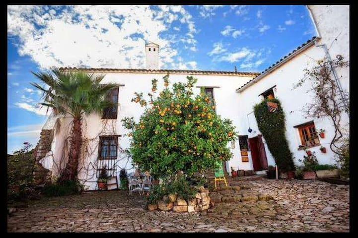 HABITACION DENTRO DE UNA POSADA MEDIEVAL - Castillo de Castellar - Kasteel