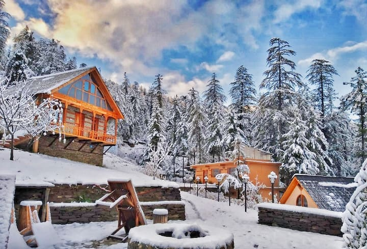 Luxury in the Lap of Himalayas Oakwood cottage