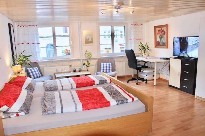 1 Zimmer Wohnung in der Innenstadt von Konstanz