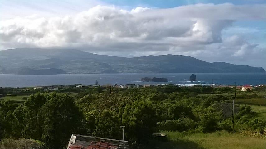 Beautiful Island of Pico House - Madalena - Haus