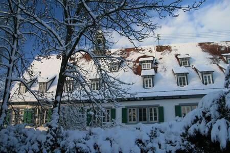 Wohnen mit historischem Flair - Remseck - Apartment