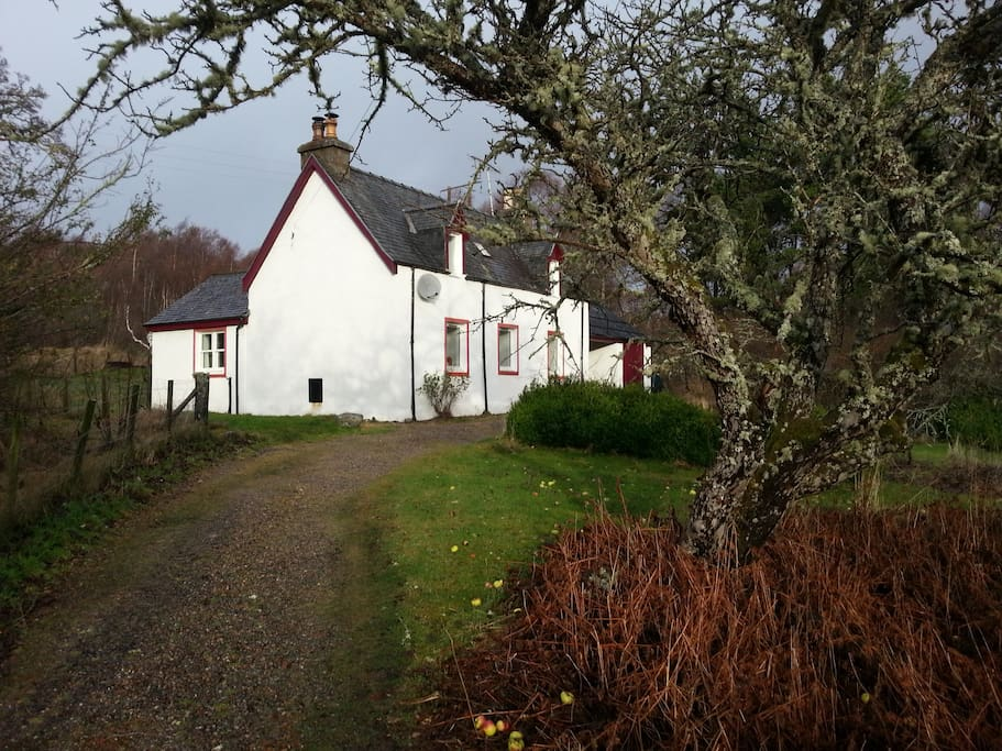 Cosy and warm cottage, even in winter
