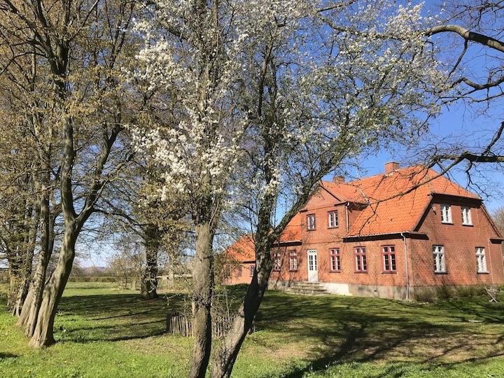 Stort smukt hus med havudsigt tæt på Møns Klint