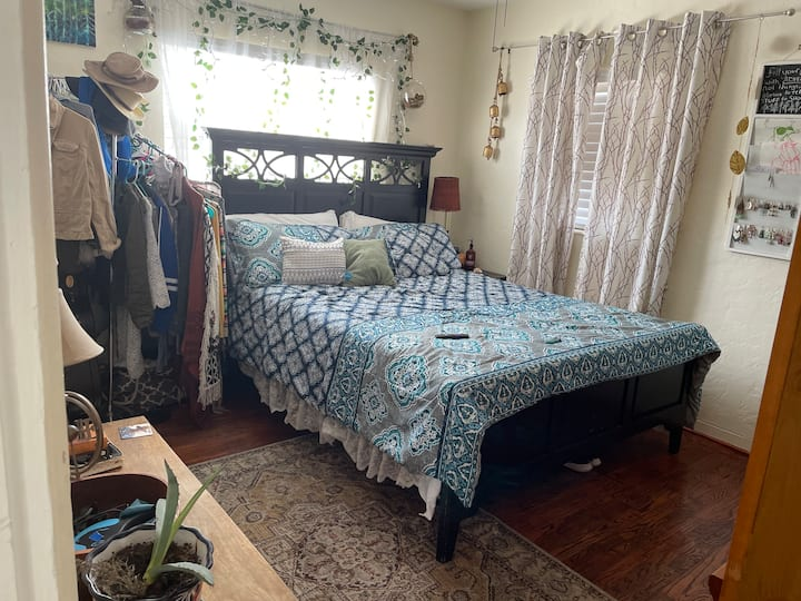 Lovely room near downtown st Pete