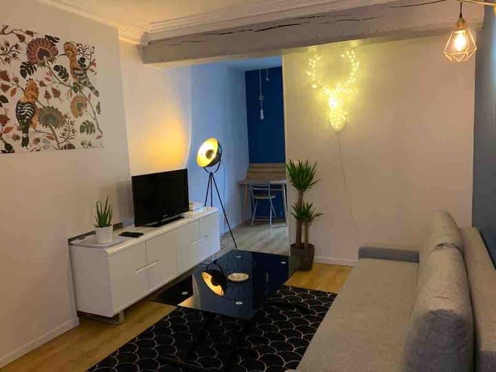 Appartement charmant en coeur de ville !