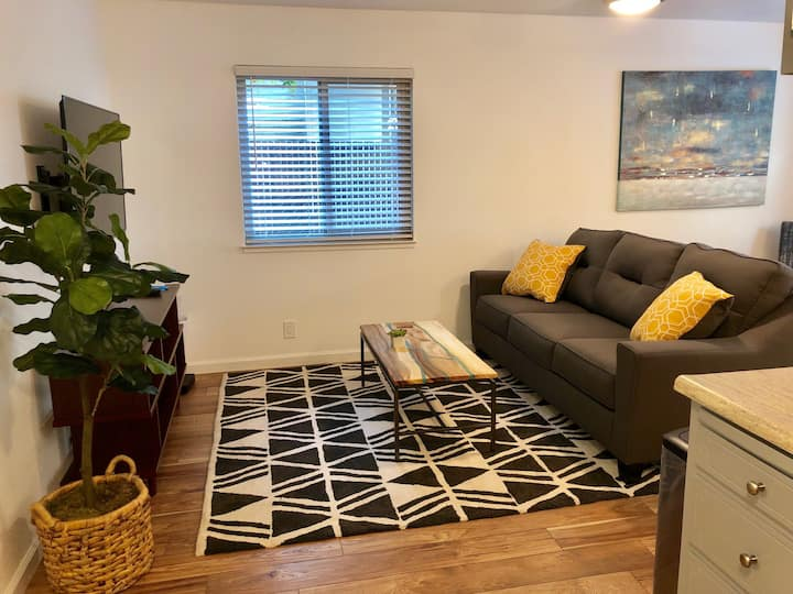 Newly Renovated Guesthouse in Downtown Chico