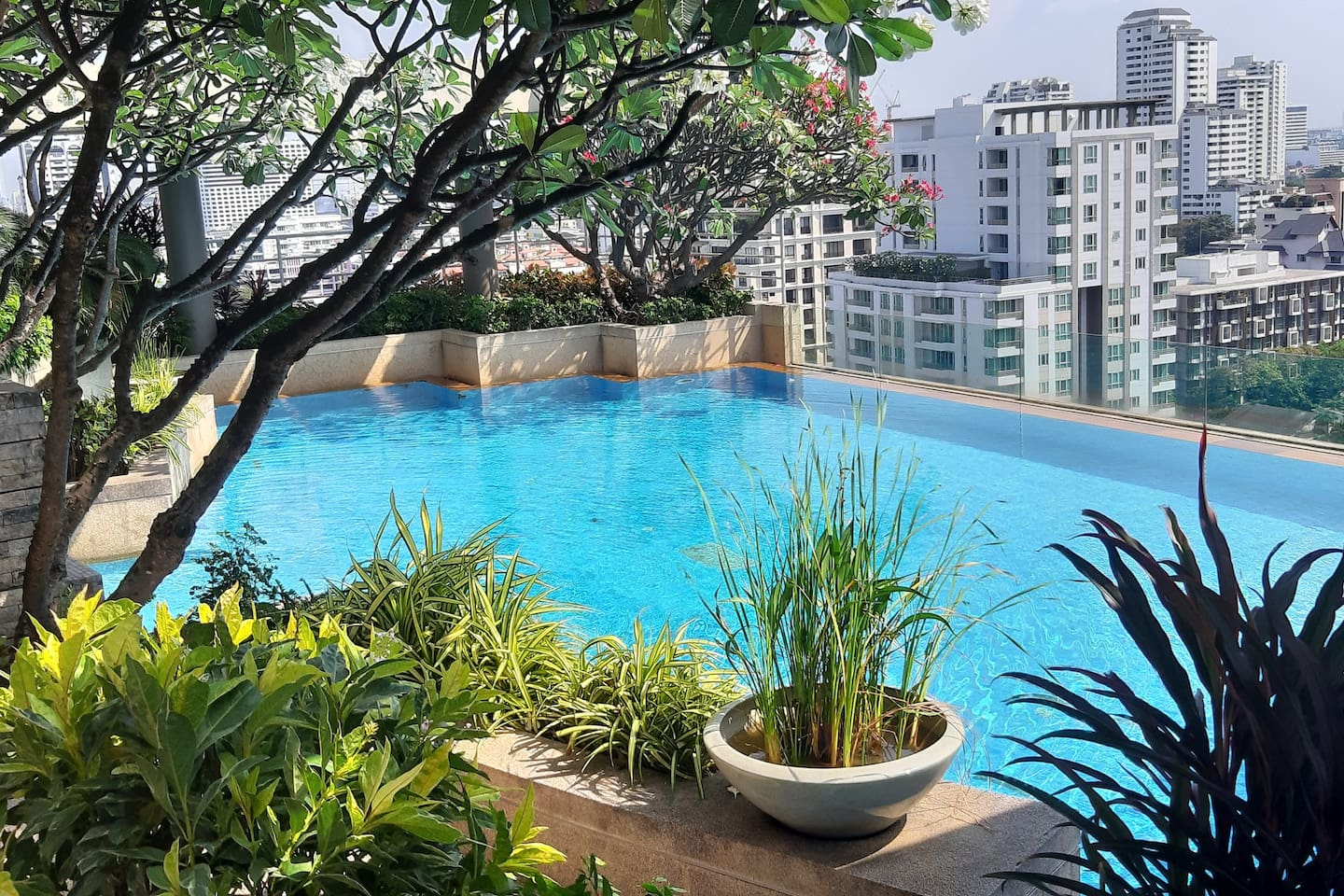 Rooftop swimming pool with a nice view
