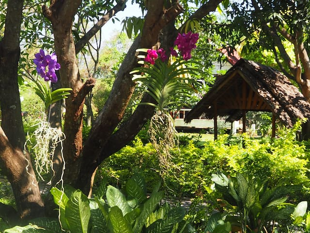 Thai Bamboo Bungalow Nr 2 with 2 Single beds