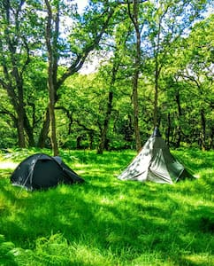 Dartmoor Wilderness Camping! - Newbridge - Lejlighed