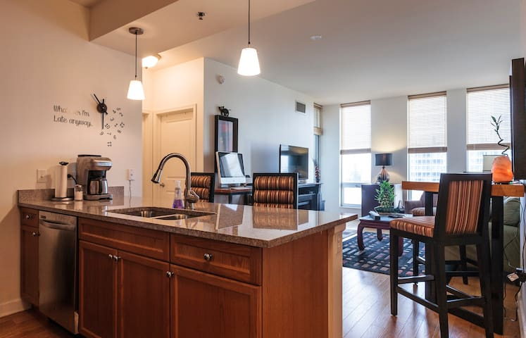 South Loop Condo, new building. - Chicago - Appartement