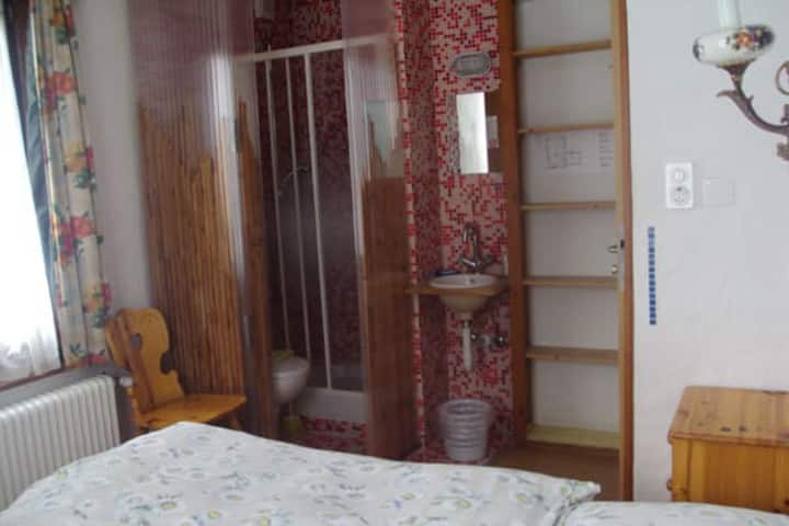 Hôtel les Touristes  twin room with shower and wc