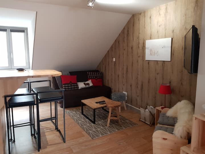 Charmant Appartement au  Mont Dore avec Wi-Fi